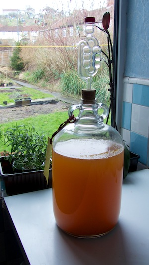 Mead or Honey Wine